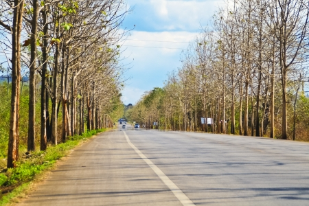 Road in countryside of Thailand photo