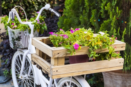 Decorated flowers on a bicycle photo