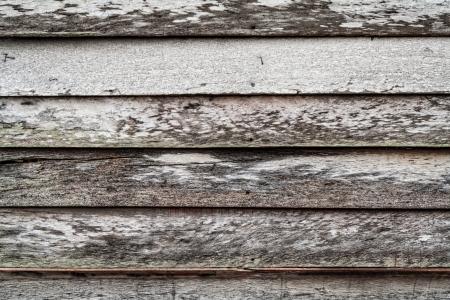 decadent: Decadent wooden wall