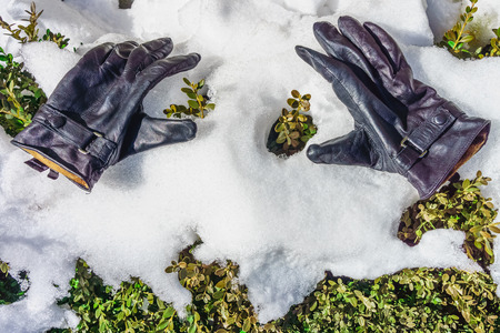 leathern: A pair of leathern gloves on snow ice Stock Photo