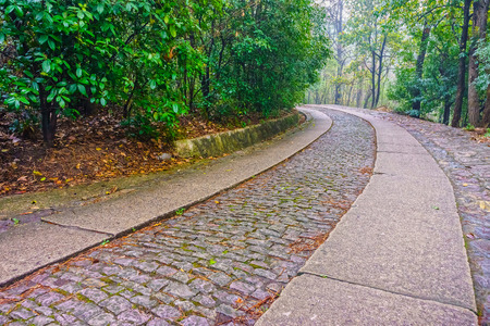 yat: The road way to the Memorial Hall garden of former president Dr.Sun Yat-sen on purple mountain near Nanjing City, China Stock Photo