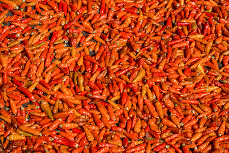 food processing: Ripe dried red Thai chili peppers are cultivated for both commercial food processing and the pharmaceutical industry.