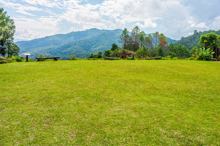 lawn area: Area of grass lawn on mountaintop in Northern Thailand