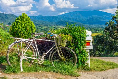 Vieux vélo et de fleurs dans le jardin pour la décoration extérieure avec  vue montagne naturelle gamme de paysage dans la campagne, Nord de la ...