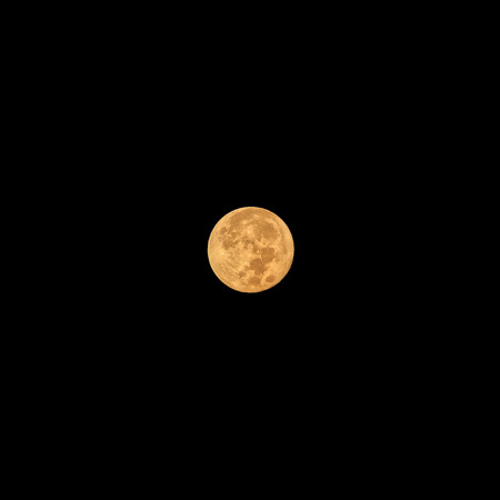 completely: Full moon completely illuminated maximum size at clear night. The phenomenon is seen from the Earth