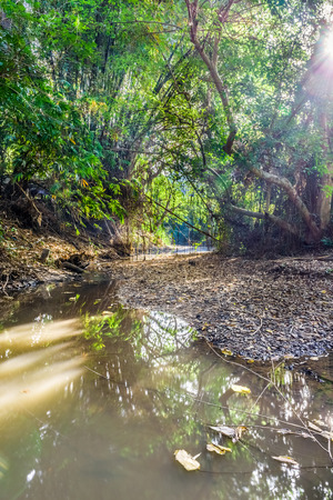Natural watercourse in hot summer. The river run dry from overuse in Thailand. Stock Photo