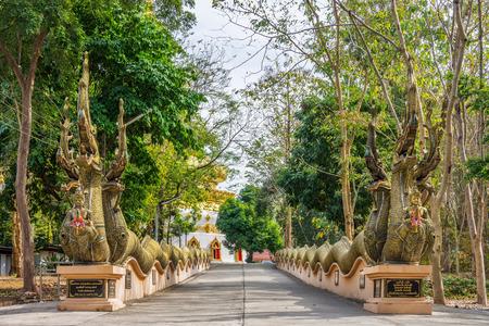 thani: UTHAI THANI, THAILAND - MAY 23, 2016: The entrance of Wat Pha Tung decorated with vintage Thai Naga statues, Wat Pha Tung is a Thai Buddhist temple in Ban Rai District, Uthai Thani, Thailand, Asia.