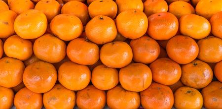 citrus reticulata: Pile of Citrus reticulata. It is also known as mandarin orange.