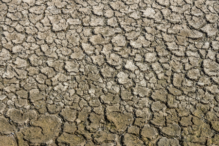 Pattern of contraction and desiccation cracks in dry earth. Because of the lack of water in the soil. Фото со стока