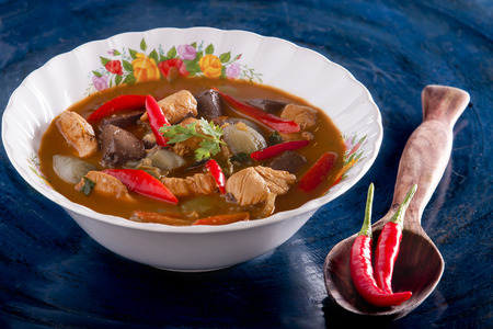 Chicken spicy curry Thai traditional food style photo