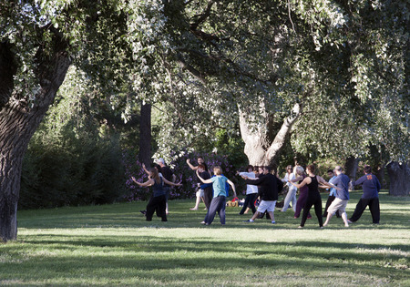 chi: avignon,france-june 19, 2015: Group of people doing tai chi in a park in avignon