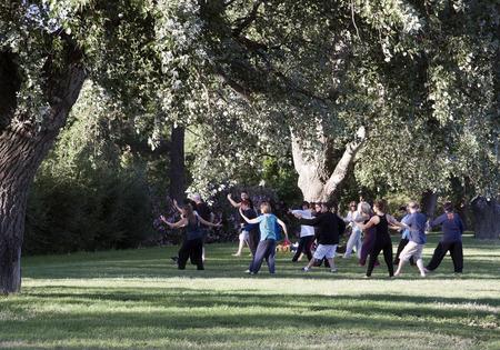 Avignon, Frankrijk-19 juni 2015: Groep van mensen die tai chi in een park in Avignon Stockfoto - 42334681