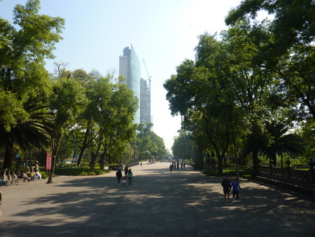 A wide lane in Chapultepec Park in Mexico CIty 版權商用圖片