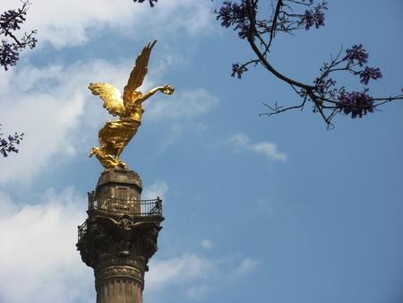 angel de la independencia: Monumento del Ángel de la Independencia en la Ciudad de México