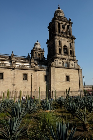 View of the Metropolitan Cathedral from the cactus garden on the Zocalo square in Mexico City