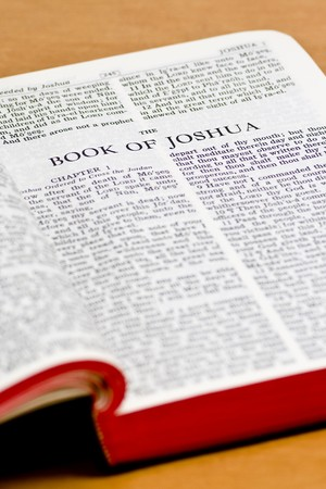 Close up of Joshua bible page