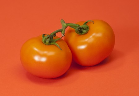 Ripe tomatoes on an orange background