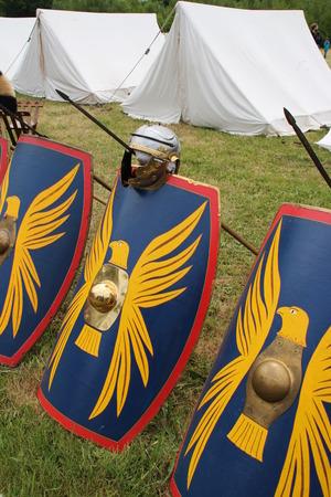 cohort: Romans Shields