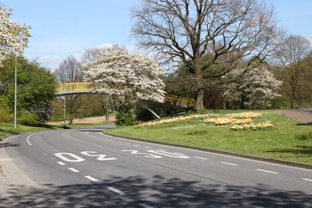 Eine Straße im Frühjahr Standard-Bild - 58012356