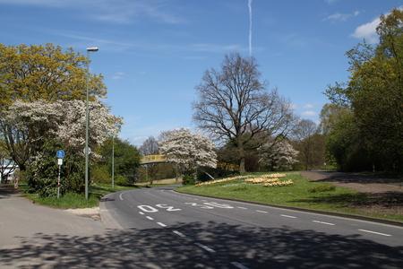 Eine Straße im Frühjahr Standard-Bild - 58012367