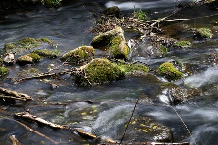 Stones in a small river