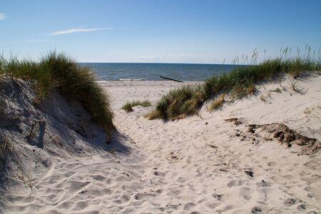 A beach at the baltic sea
