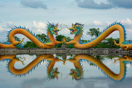 reflection water: Two dragon water reflection.