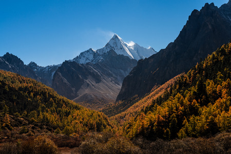 The Snow mountain sanctuary with Autumn tree color at national level reserve in Daocheng County, in the southwest of Sichuan Province, China. Stock Photo
