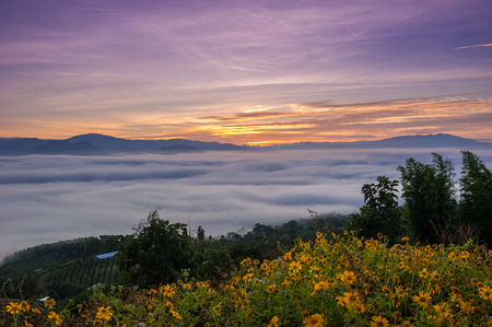 Sunrise and sea of clouds over Pai District Mae Hong Son, THAILAND. View from Yun Lai Viewpoint is located about 5 km to the West of Pai town centre above the Chinese Village.
