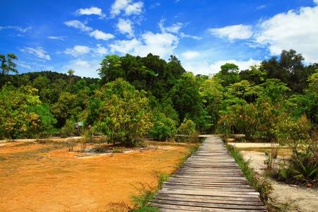 De weg naar de natuur
