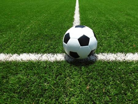 soccerball: soccer field grass