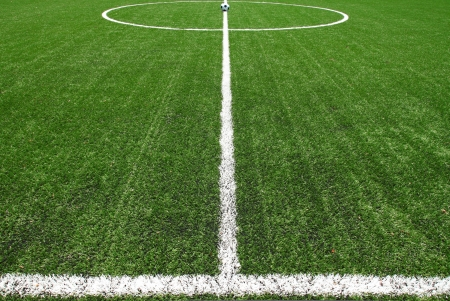 football pitch: soccer field grass