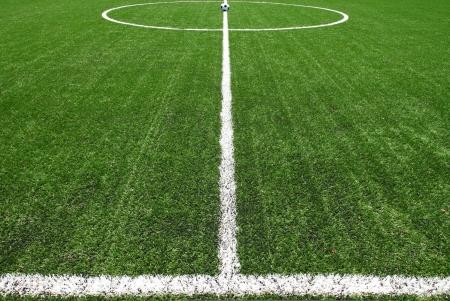 football pitch: soccer field grass