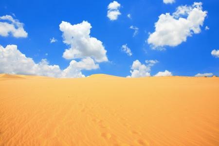 hummock: Gold desert