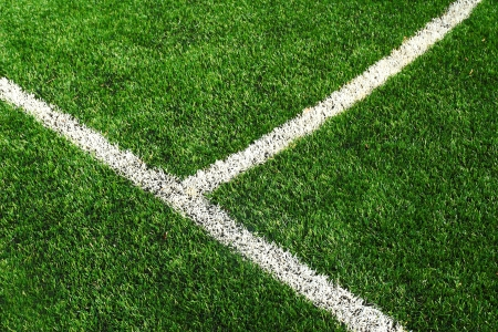 Soccer football field stadium grass line photo