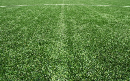 line on the Green Grass Texture in Soccer Field photo