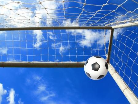 Soccer ball in net  photo