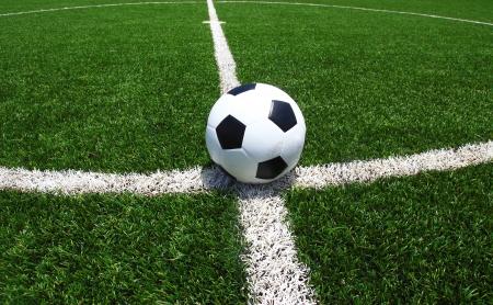 field  soccer: bal?n de f?tbol sobre hierba verde  Foto de archivo