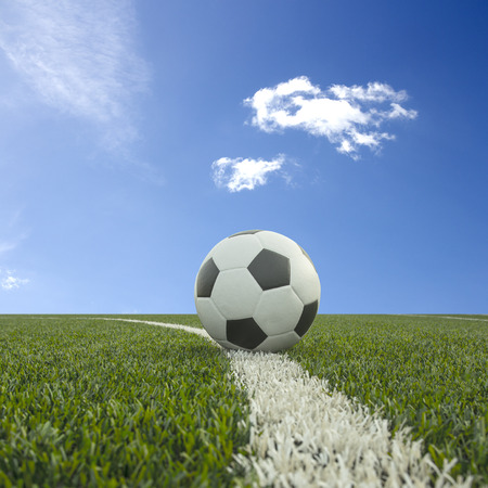 synthetic: soccer field grass with ball