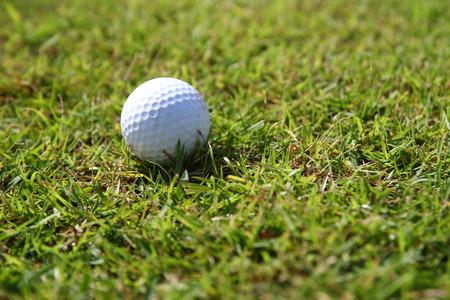 Golf balls on green grass background photo