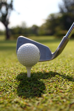Golf balls and Driver on green grass background photo