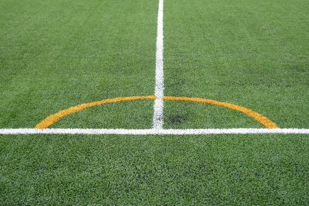 soccer field grass: soccer field grass