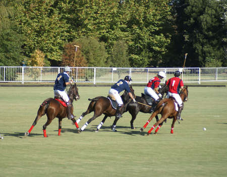 polo players in the action of a match