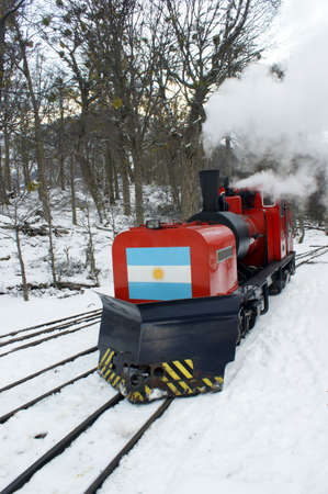 forest railway: The steam locomotive of the Tierra del Fuego train
