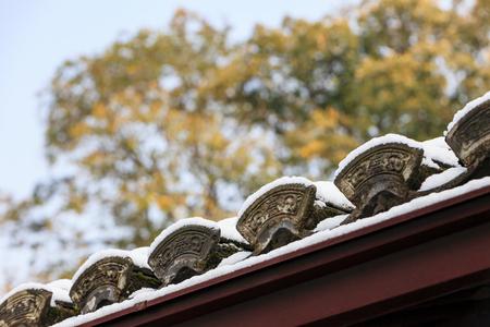 snow eaves