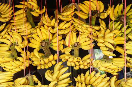 musa: ripe banana
