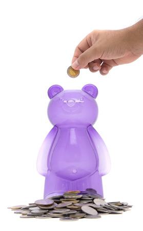 purple piggy bear bank isolated white background photo