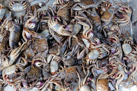 preservation: Crab salt preservation