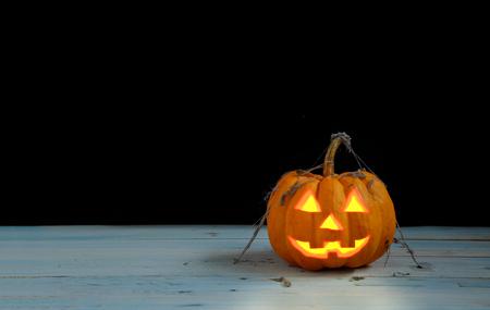 calabazas de halloween: calabaza de Halloween en escena oscura