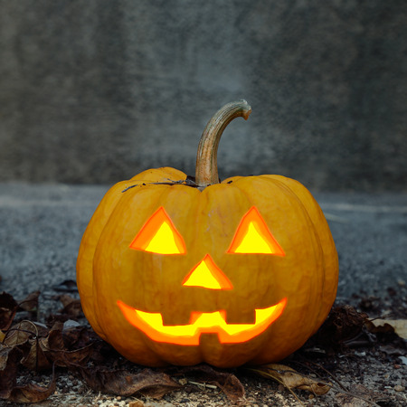 jack o  lantern: halloween pumpkin closeup in dark scene